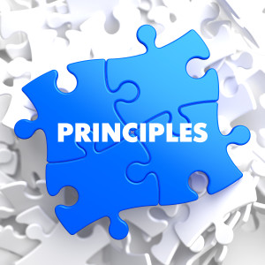 Principles on Blue Puzzle.